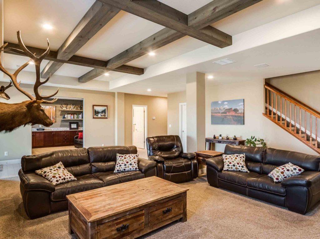 Lower Living Room 4